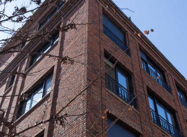 Fasadne-cigle-beograd-stambena-zgrada-internacionalne-brigade-Vracac-brick-house-00008