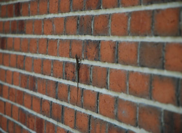 Fasadne-cigle-Valjevska-Loznica-privatna-kuca-feldhaus-klinker-brick-house-00002
