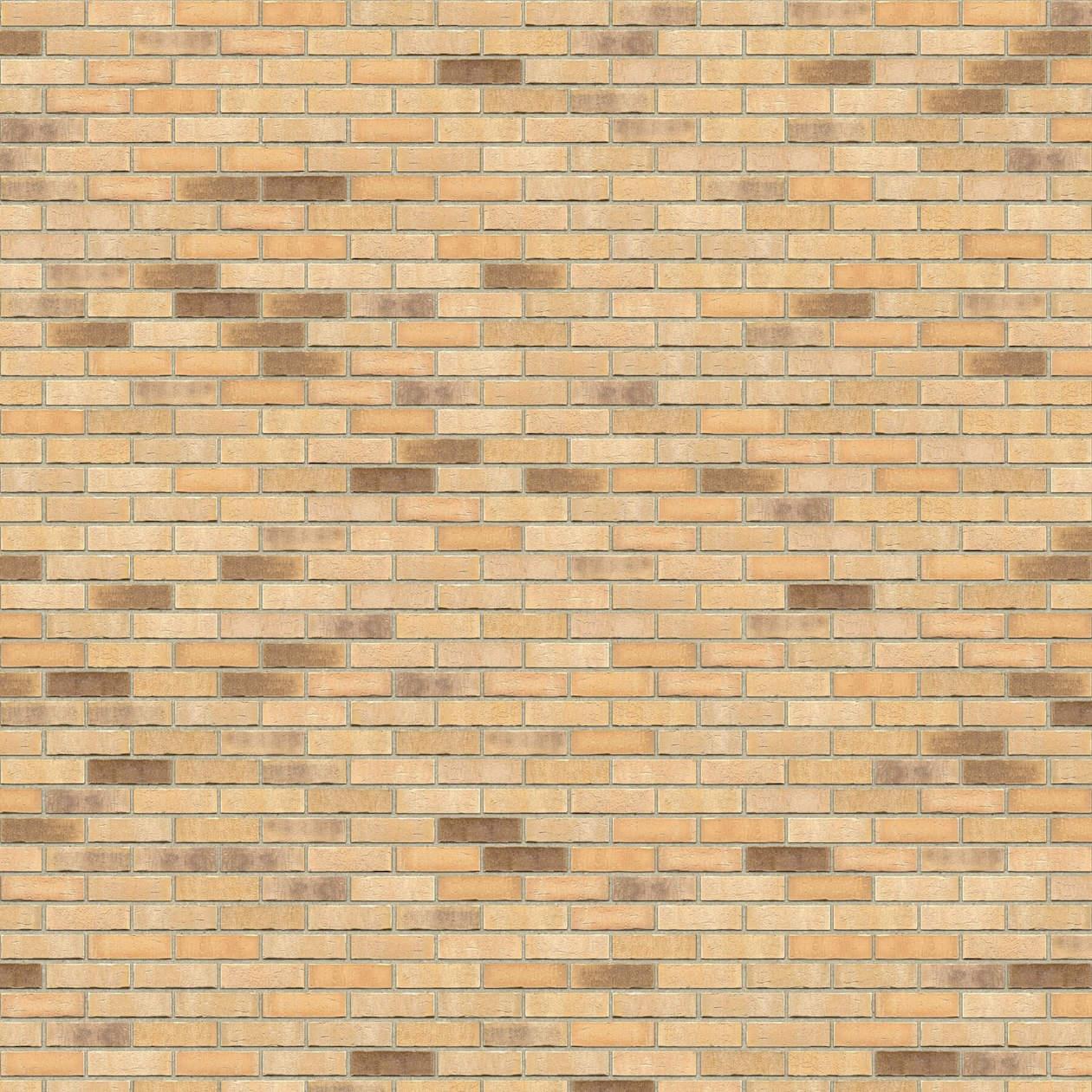 Puna-cigla-FeldHaus-Klinker-brick-house-Beograd-nf-k-723-Bez Fuga