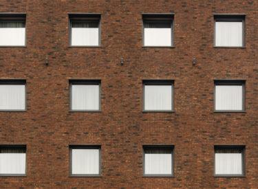 cena-pune-fasadne-cigle-brick-house