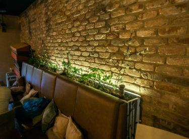 enterijer-dekorativne-listele-zid-pardon