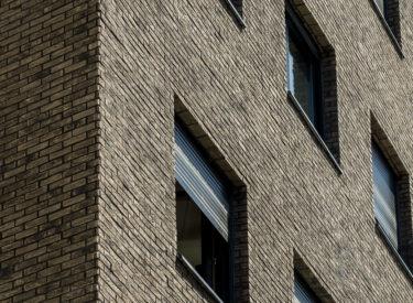 fasadne-cigle-listele-kapije-vracara-stambena-zgrada